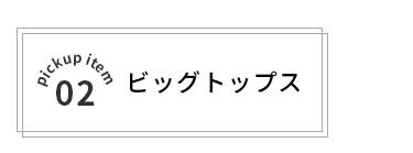 02ビッグトップス